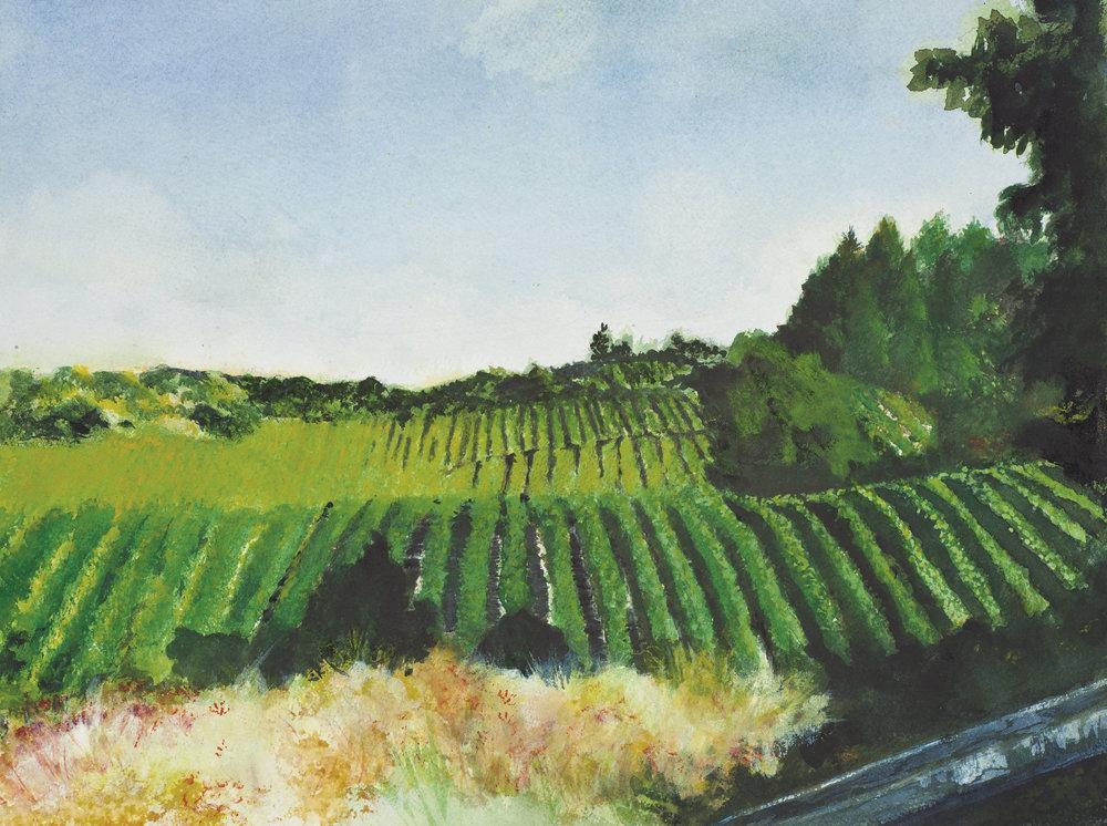 Vineyard(f2)